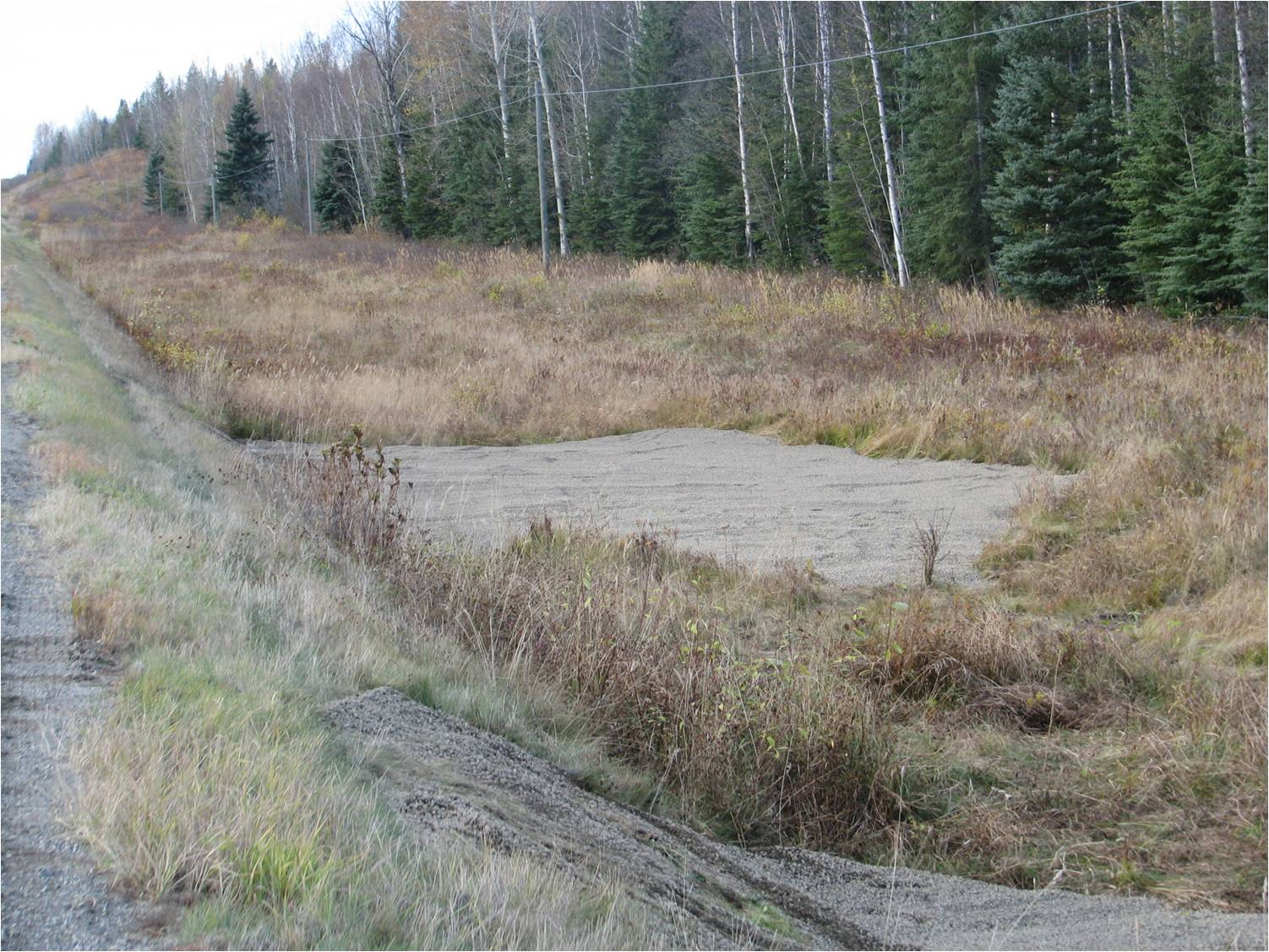 Example of a treated roadside salt pool/mineral lick filled with small rocks, BC. Image credit: Gayle Hesse, Wildlife Collision Prevention Program (WCPP)