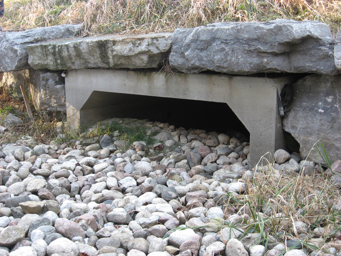 This specific underpass is for turtles and other small  animals. Image credit: Shawna  Meister, TIRF