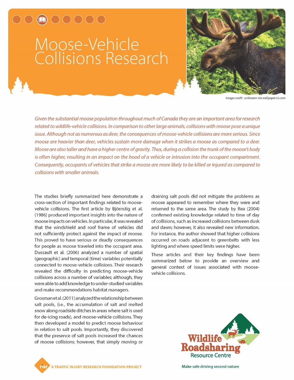 WVC Moose-Vehicle Collisions Research Handout