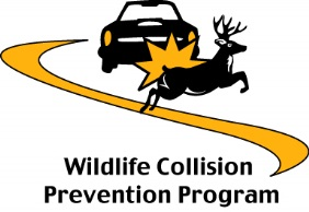 WillifeCollisionPreventionProgram