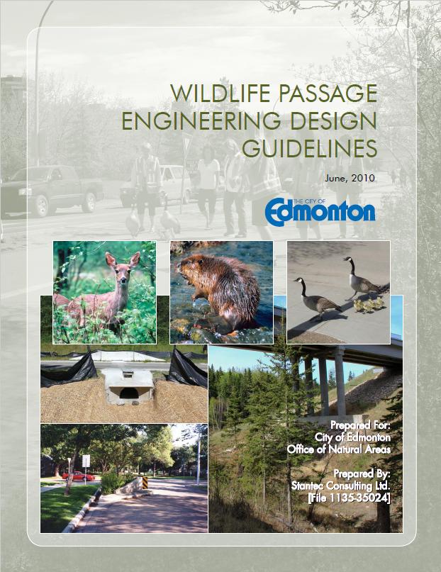 City of Edmonton Guide